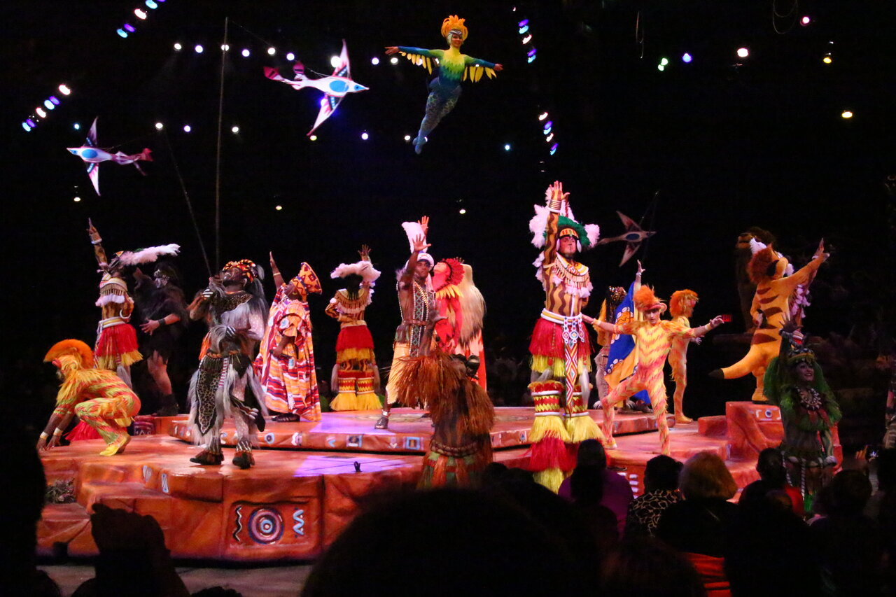 rsz_disney-animal-kingdom-lion-king-8464